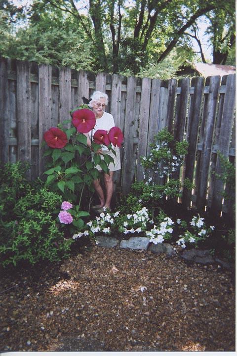 Mamah_Garden_No2