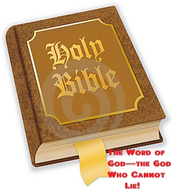 poisonwood bible essay prompts Write an essay in which you analyze how the complex attitude of the speaker is developed through such devices as the age of innocence the poisonwood bible.
